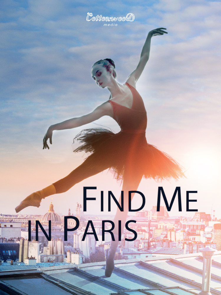Find Me In Paris Serie
